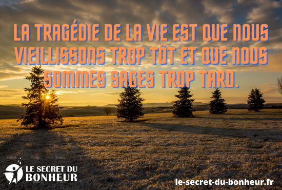 les principes du leadership pdf